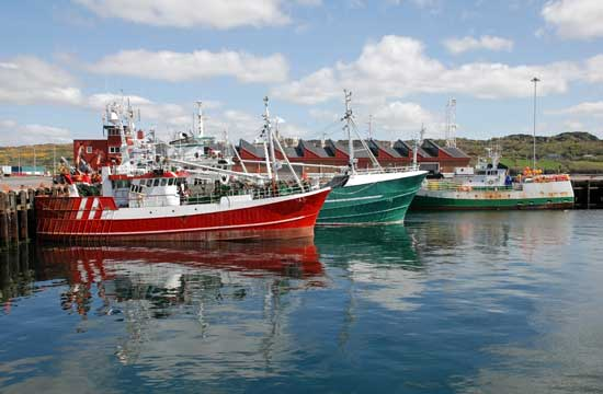Solicitors-specialising-in-Marine-Law-in-Ireland